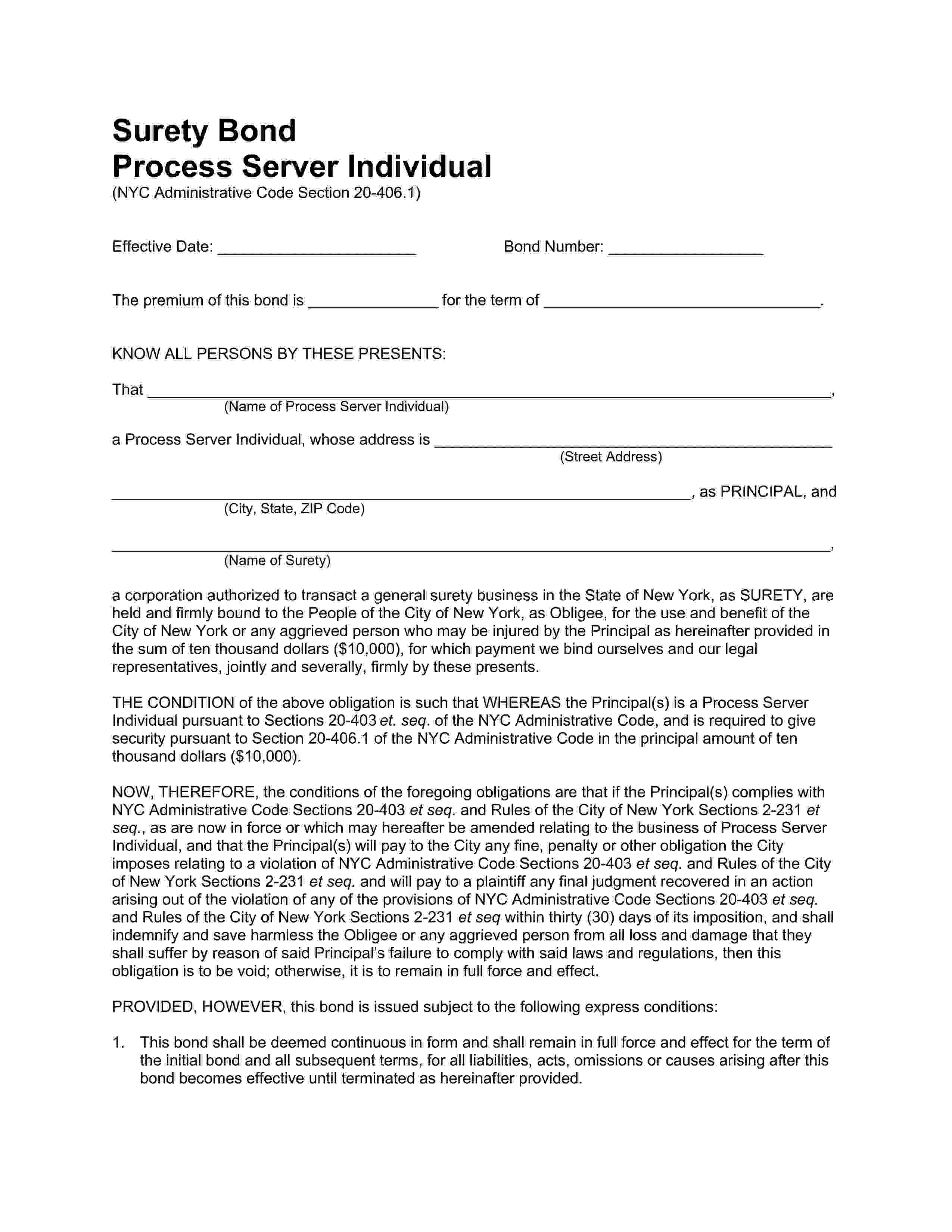 City of New York Process Server Individual sample image