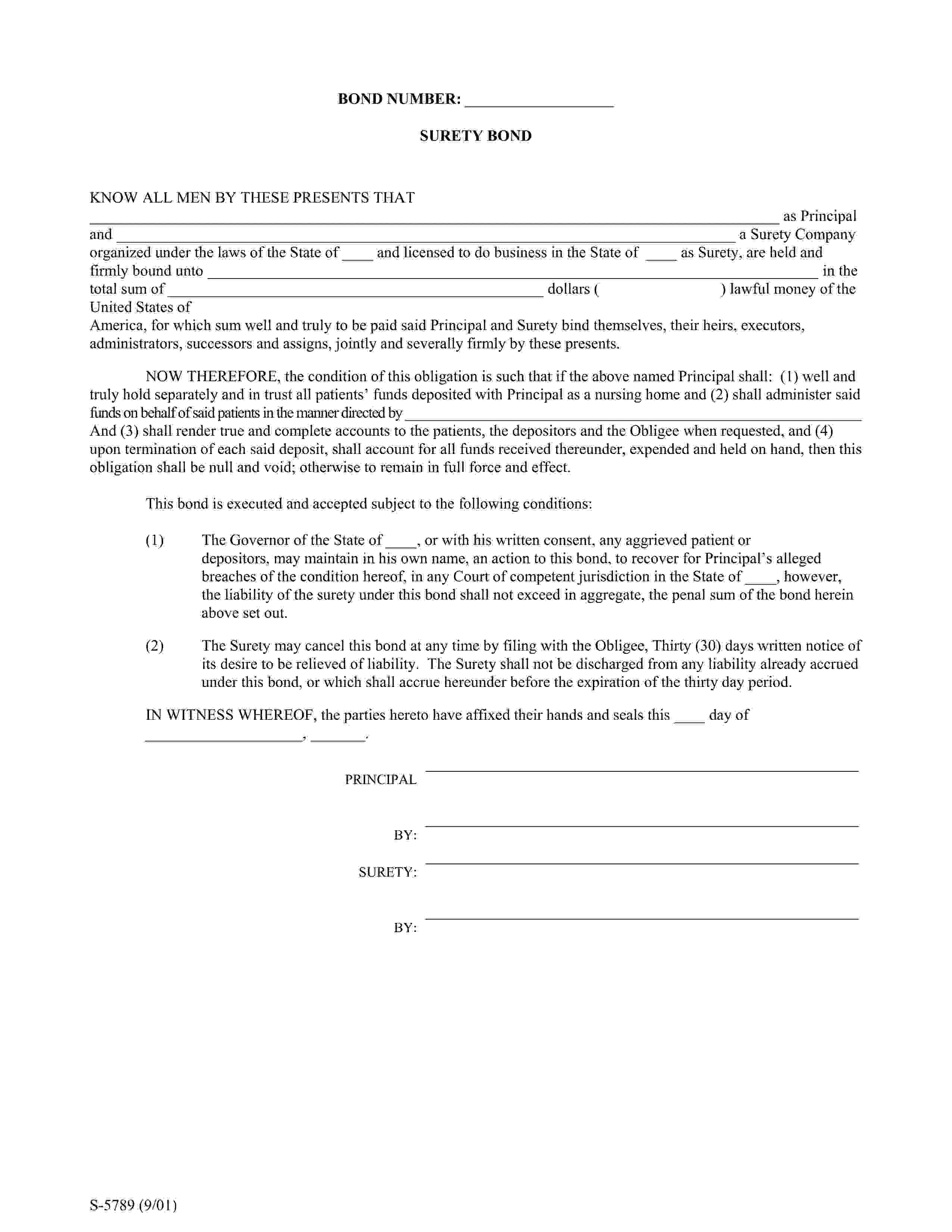 Maryland Department of Health Nursing Home Patient Trust Funds Bond sample image