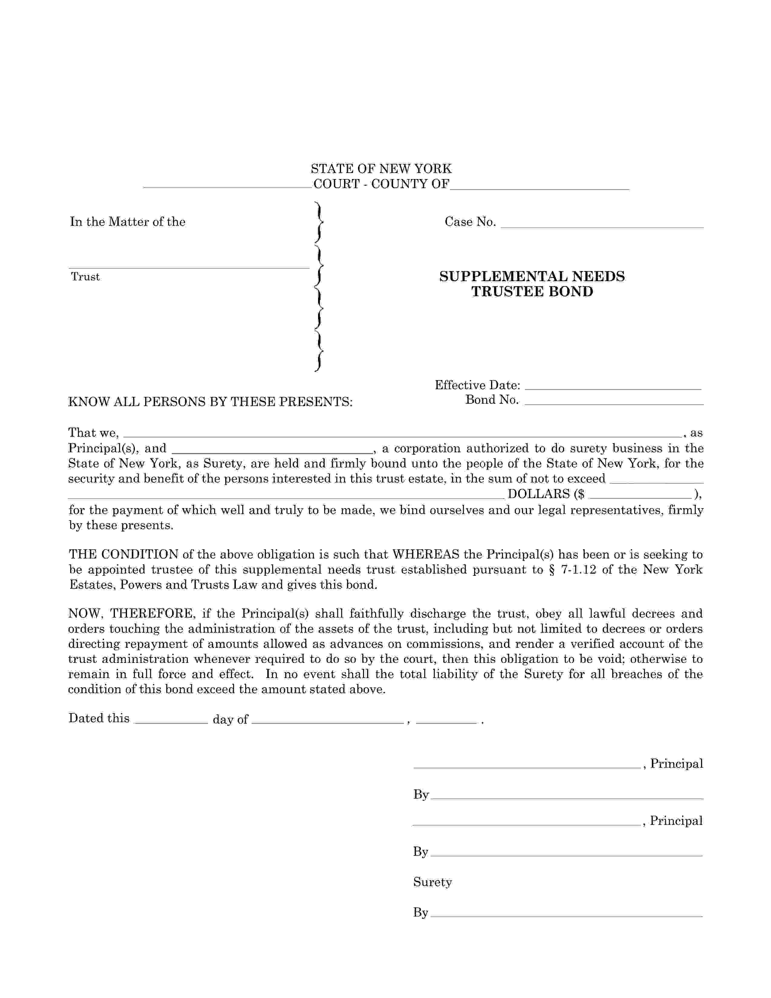 Supplemental Needs Trustee Bond sample image