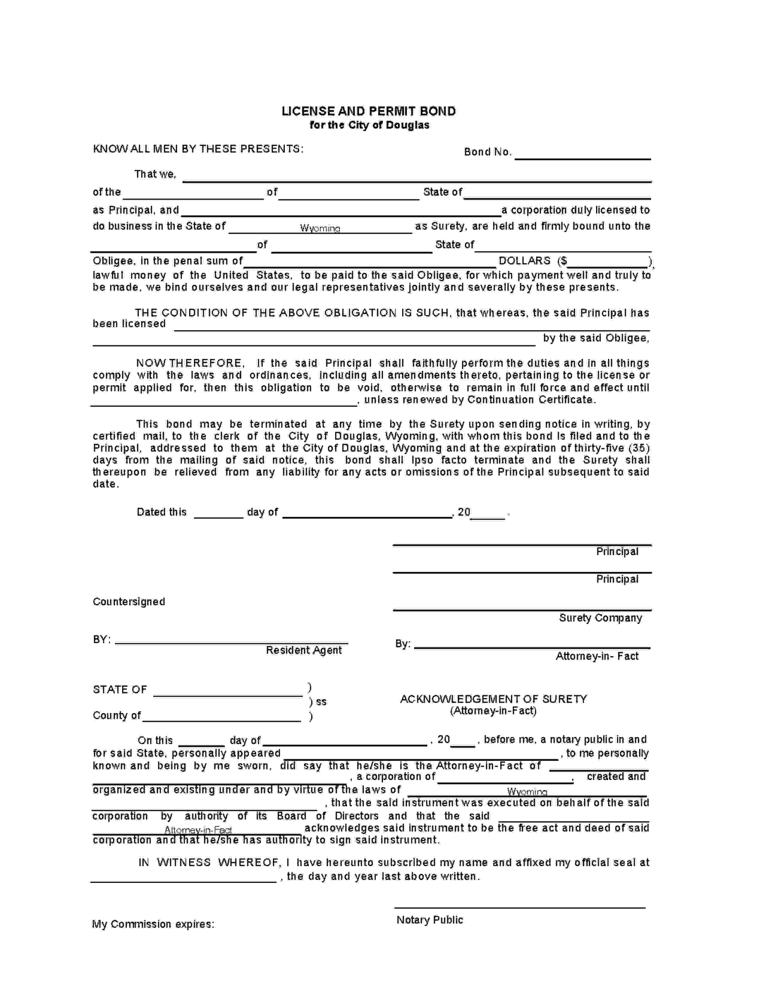 Douglas - City License/Permit sample image
