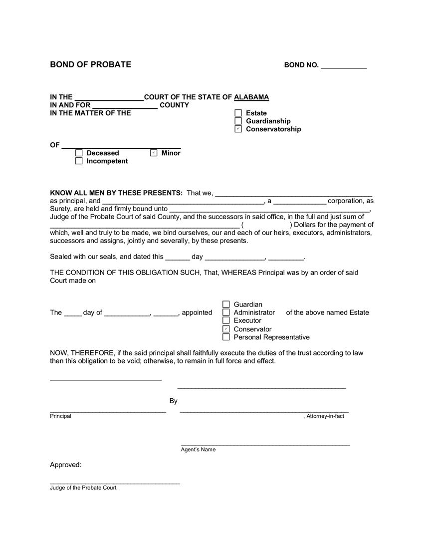Conservator Minor $25,001 or Greater Bond sample image