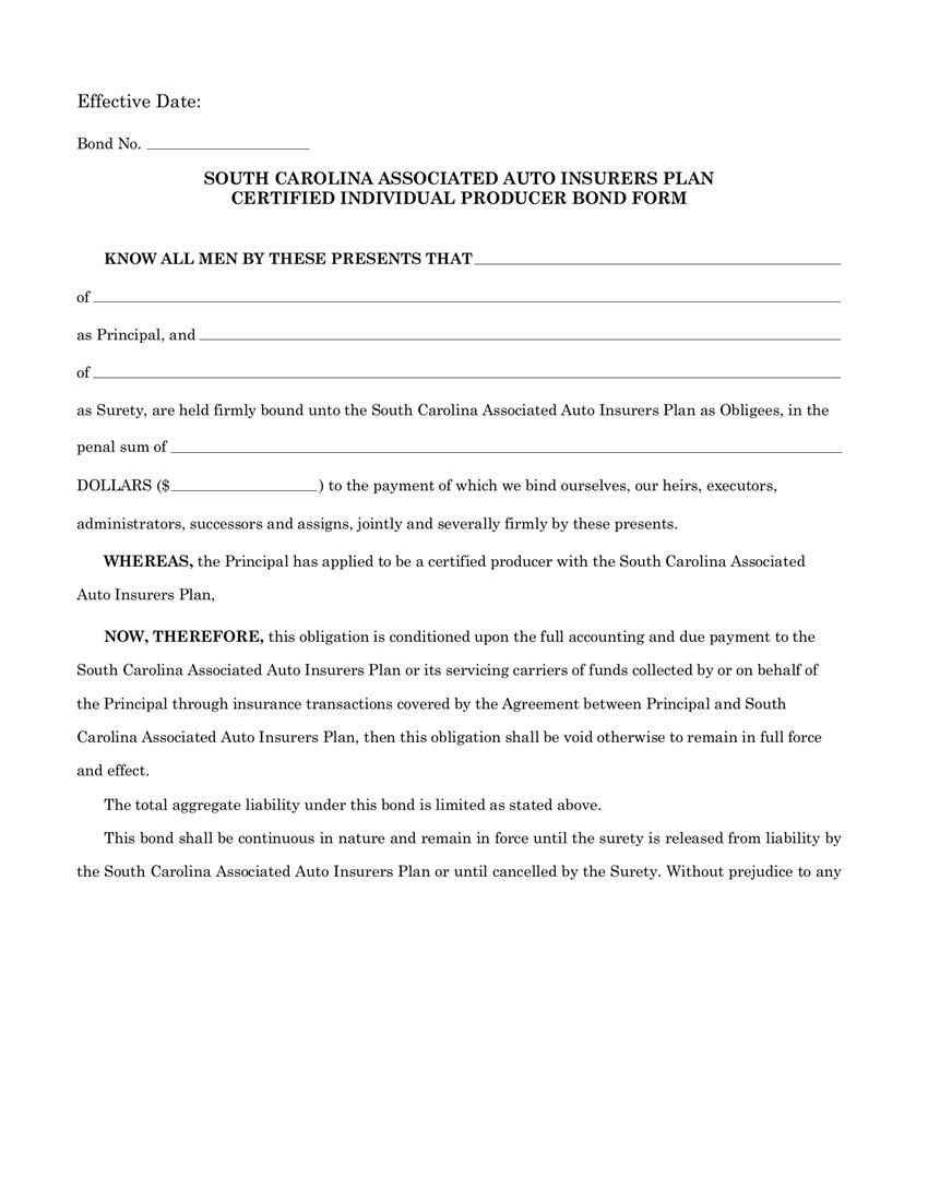 Associated Auto Insurers Plan Certified Individual Producer Bond sample image